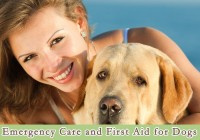 Emergency Care and First Aid for Dogs
