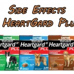 Side Effects of Heartgard Plus- JAN. 2020 Updated