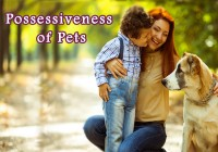 possessiveness-of-pets
