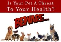 Pet Threat