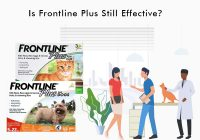 Frontline Plus Still Effective in 2020