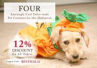best pet supplies deals on halloween
