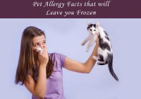 Shocking Pet Allergy Facts