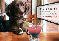 Dog friendly restaurants in Sacramento, CA