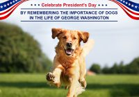Celebrate President's Day by Remembering the Importance of Dogs