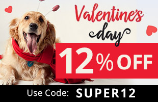15% Discount on All Orders