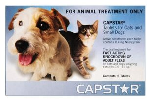 Capstar-tablets-for-dogs