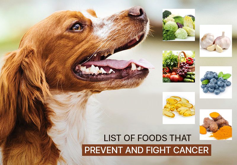 Food that fight against Cancer