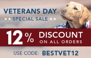 BestVetCare Veterans Day 2019
