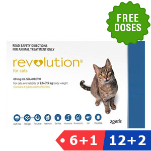 Revolution for cat