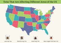 Ticks That Are Affecting Different Areas of the US
