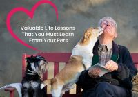 Valuable Life Lessons learn from your Pets