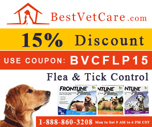 Buy Cheapest Frontline Plus for Dogs + Extra 15% Discount