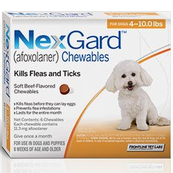 Nexgard-effective-treatment-for-fleas-and-ticks