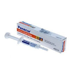 Panacur Worming Paste