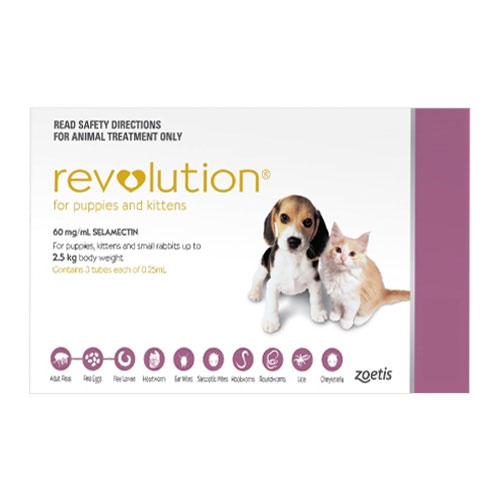 Revolution Kittens / Puppies (Pink)