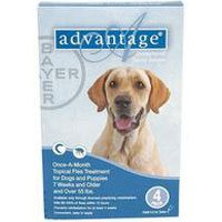 Advantage Extra Large Dogs over 55 lbs (Blue)