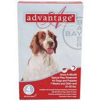 Advantage Large Dogs 21-55lbs (Red) 12 + 4 Free Doses