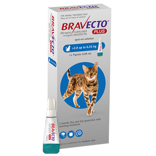 Bravecto Plus for Medium Cats 250 mg (6.2 to 13.75 lbs) Blue