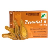 Essential 6  45-90 lbs (Large)