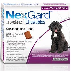 Image of Nexgard Chewables For Large Dogs 24.1-60 Lbs (Purple) 68mg 12 Chews