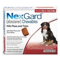 Image result for nexgard for dogs