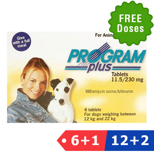 Program Plus for Dogs 21 - 45 lbs (Yellow)