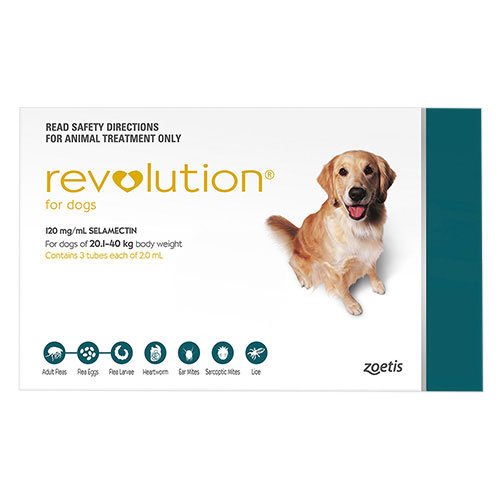 Revolution Large Dogs 40.1-85lbs (Green)