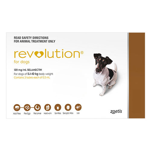 Revolution Small Dogs 10.1 - 20lbs (Brown)