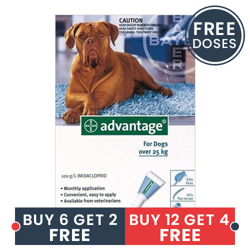 Best Vet Care coupon: Advantage X-Large Dogs Over 55 Lbs Blue 4 Doses