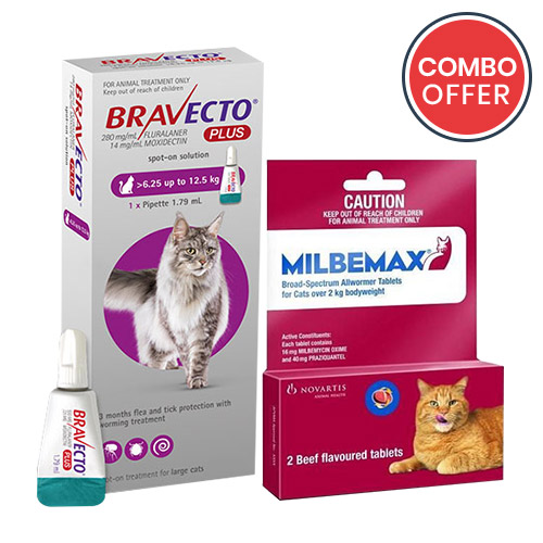 black-Friday-2019-deals/Bravecto-Plus-Milbemax-Cats-Combo-Pack-For-Large-Cats13-75-27-5lbs-of.jpg