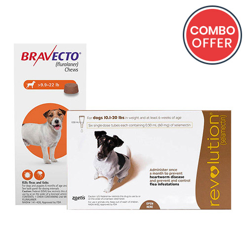black-Friday-2019-deals/Bravecto-Revolution-Combo-Pack-For-Small-Dogs10-20lbs-of.jpg