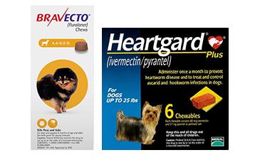 bravecto-heartgard_plus-combo
