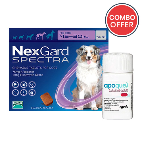 black-Friday-2019-deals/Nexgard-Spectra-Apoquel-Combo-Pack-For-Large-Dogs33-66lbs-of.jpg