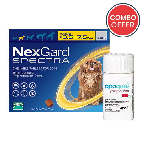 black-Friday-2019-deals/Nexgard-Spectra-Apoquel-Combo-Pack-for-Small-Dogs7-7-16-5lbs-of.jpg