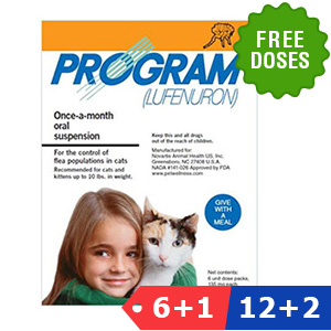 Program for Cats