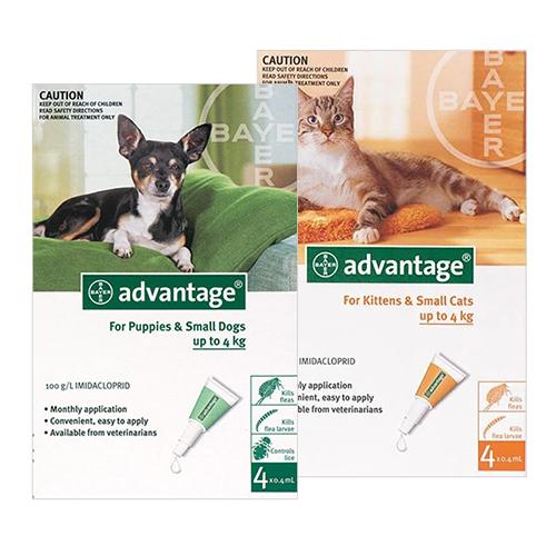 BVC-advantage-dog-cat
