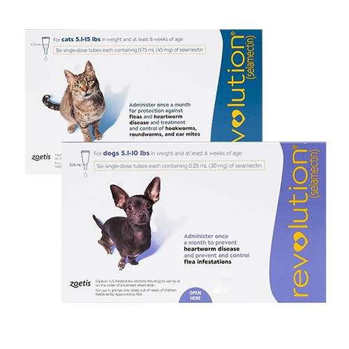 BVC-revolution-dog-cat