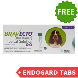 Bravecto Topical For Medium Dogs (22 - 44 Lbs) Green 1 Doses + 2 Free Endogard Tabs(Large)