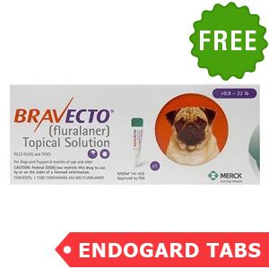Bravecto Topical For Small Dogs (9.9 - 22 Lbs) Orange 1 Doses + 2 Free Endogard Tabs(Small)