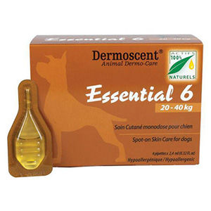 Essential 6 45-90 Lbs Large 4 Pipette