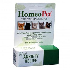 Feline-Anxiety-Relief-191498.jpg