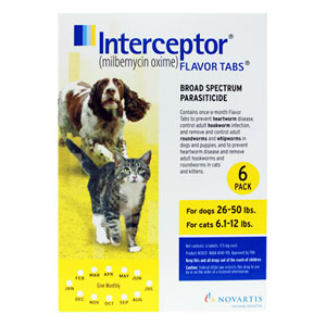Interceptor For Medium Dogs 26-50 Lbs Yellow 3 Chews