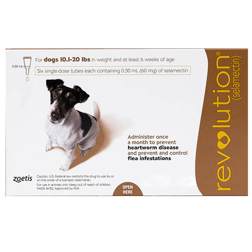 Revolution Small Dogs 10.1 - 20lbs Brown 3 Doses