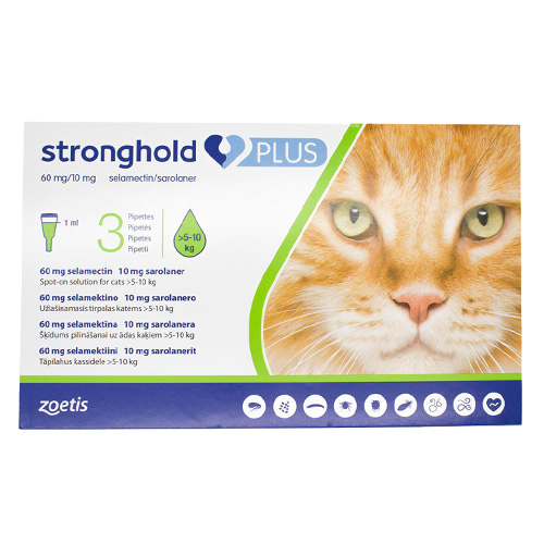 stronghold-plus-for-Large-Cats.jpg