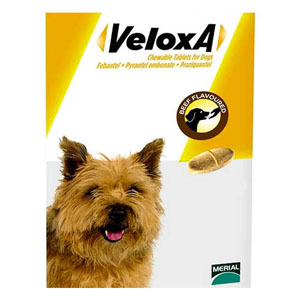 Veloxa For Small/Medium Dogs Up To 10 Kg 8 Tablet